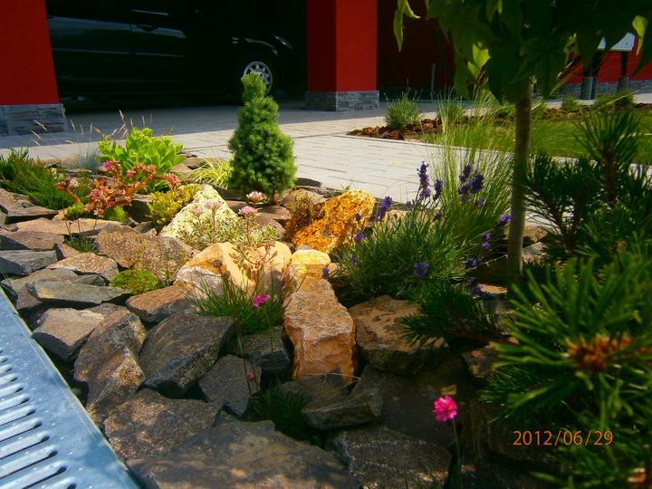 Moderná záhrada - Obrázok č. 10