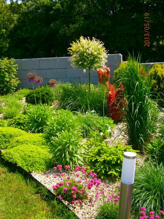Moderná záhrada - Obrázok č. 20