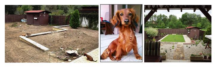 deisha - Takto vyzeral psík a záhrada počas realizácie a takto vyzerajú dnes :)