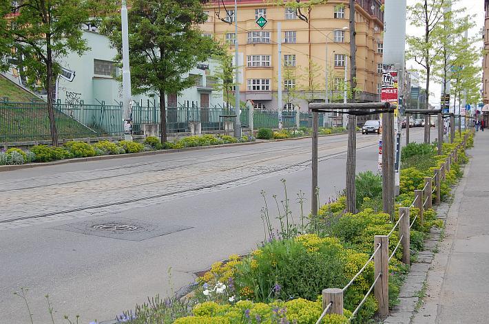 Záhrady, ktoré ma inšpirujú - Obrázok č. 24