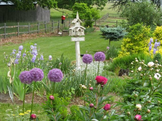Záhrady, ktoré ma inšpirujú - Obrázok č. 45