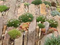 Záhrady, ktoré ma inšpirujú - Obrázok č. 75