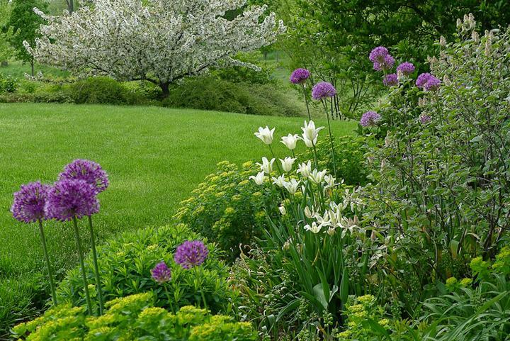 Záhrady, ktoré ma inšpirujú - Obrázok č. 94