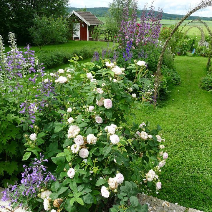 Záhrady, ktoré ma inšpirujú - Obrázok č. 97