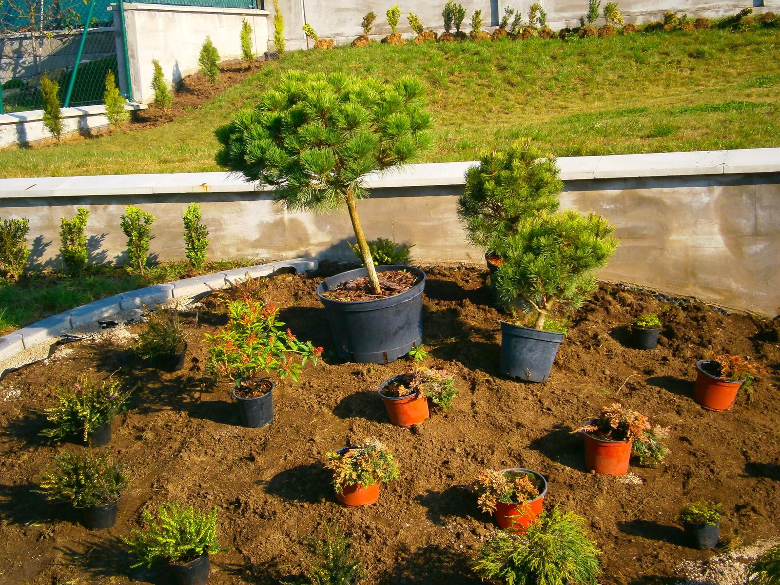 Záhrada vo svahu - Obrázok č. 12