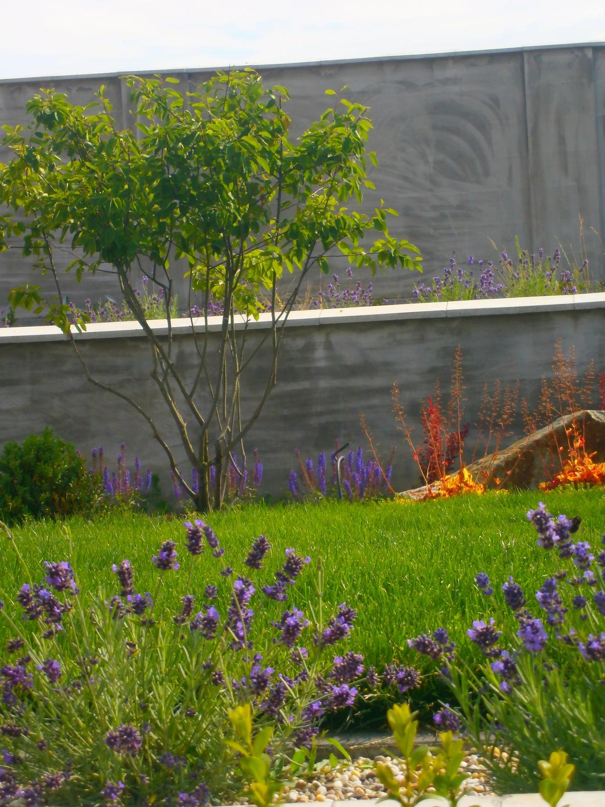 Záhrada vo svahu - Obrázok č. 52
