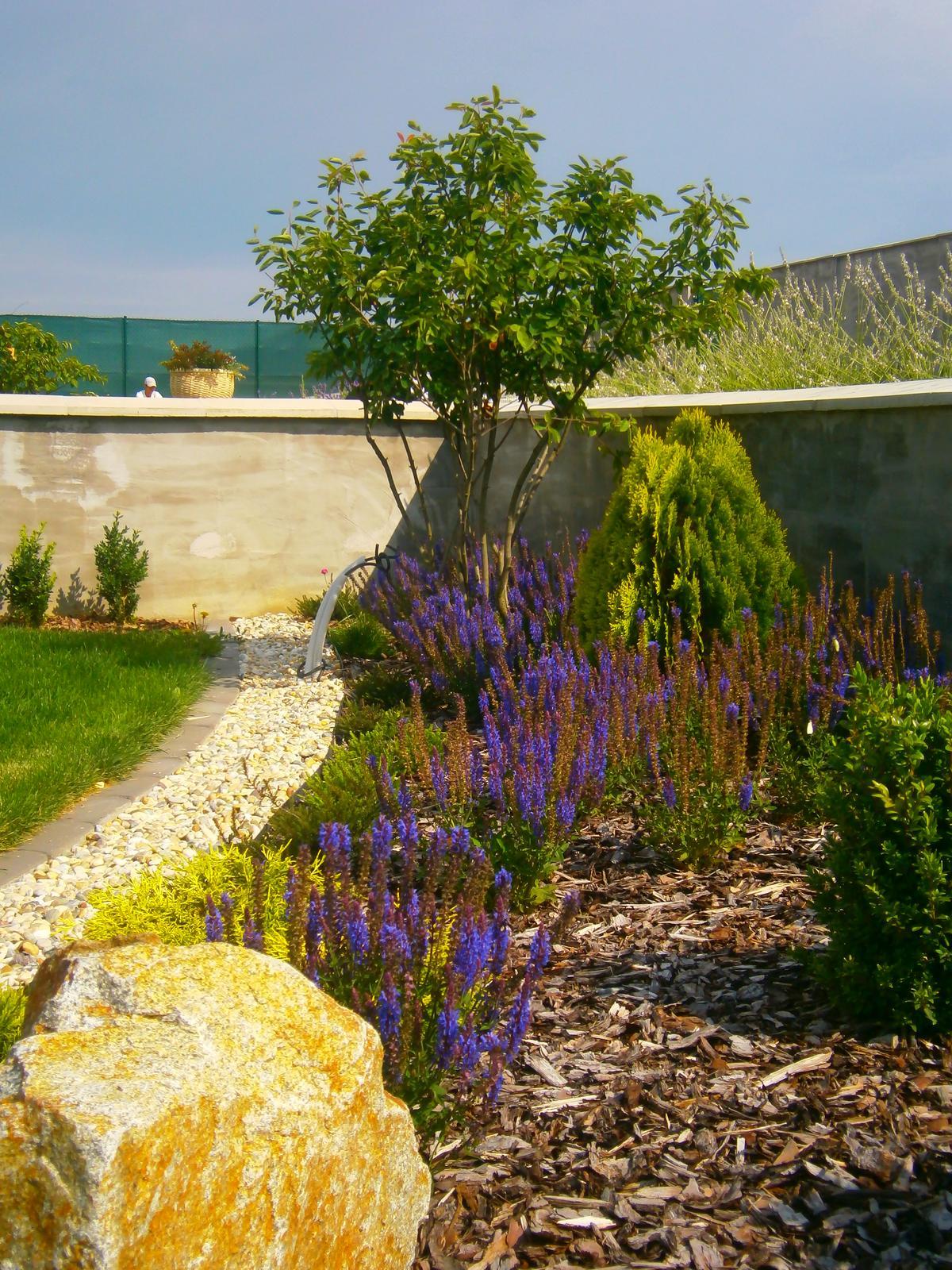 Záhrada vo svahu - Obrázok č. 55