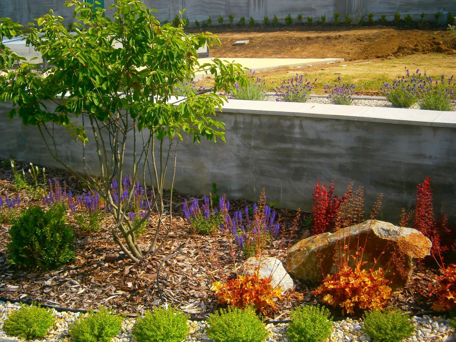 Záhrada vo svahu - Obrázok č. 56