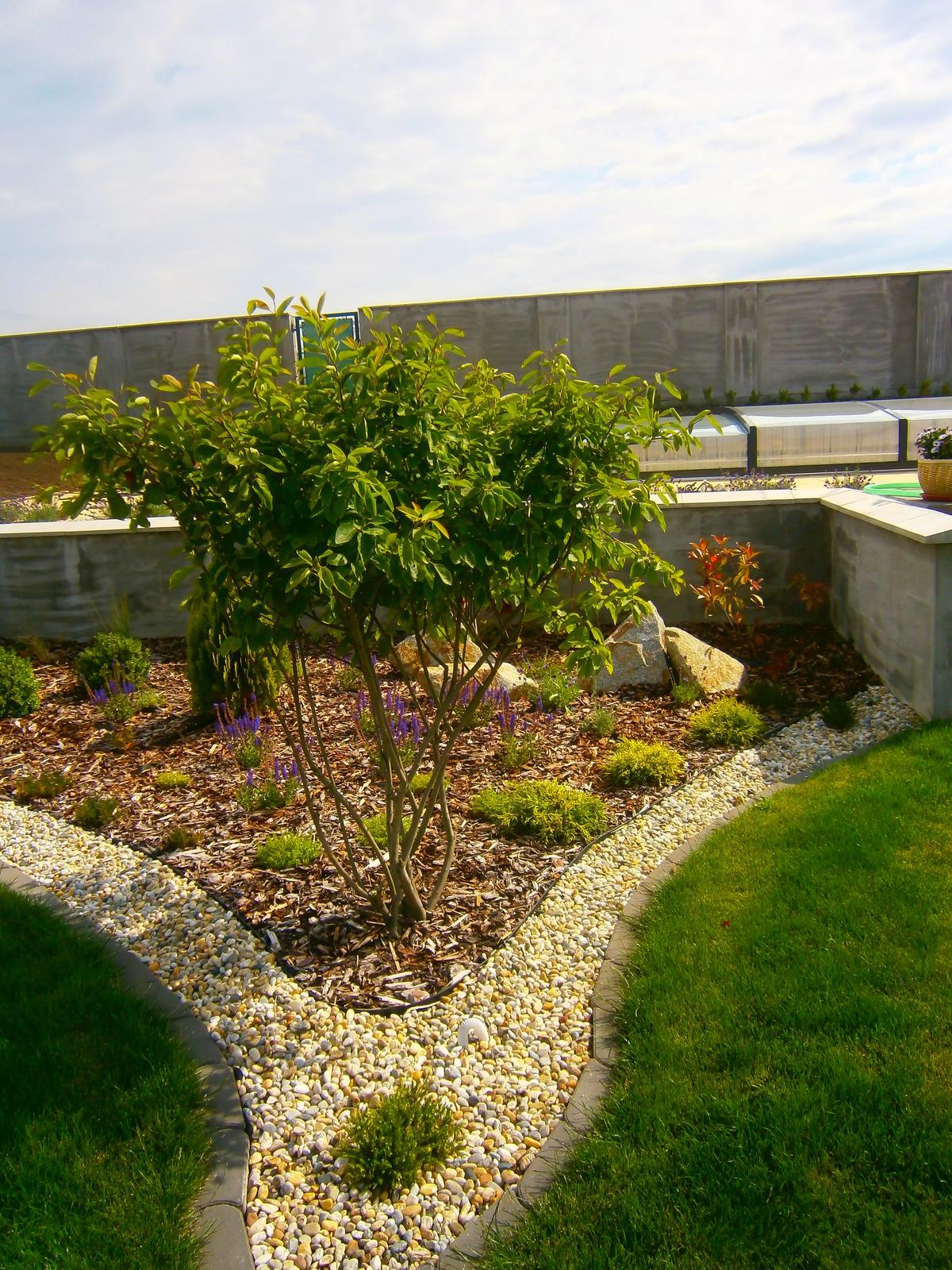 Záhrada vo svahu - Obrázok č. 58