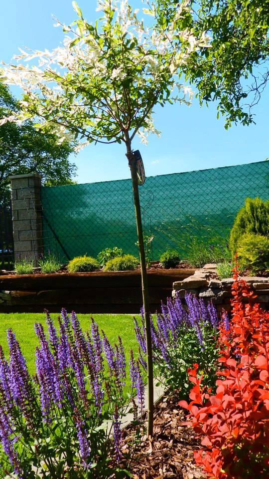 Záhrada pre oddych - Obrázok č. 25