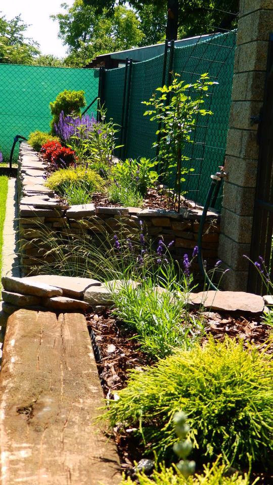Záhrada pre oddych - Obrázok č. 26