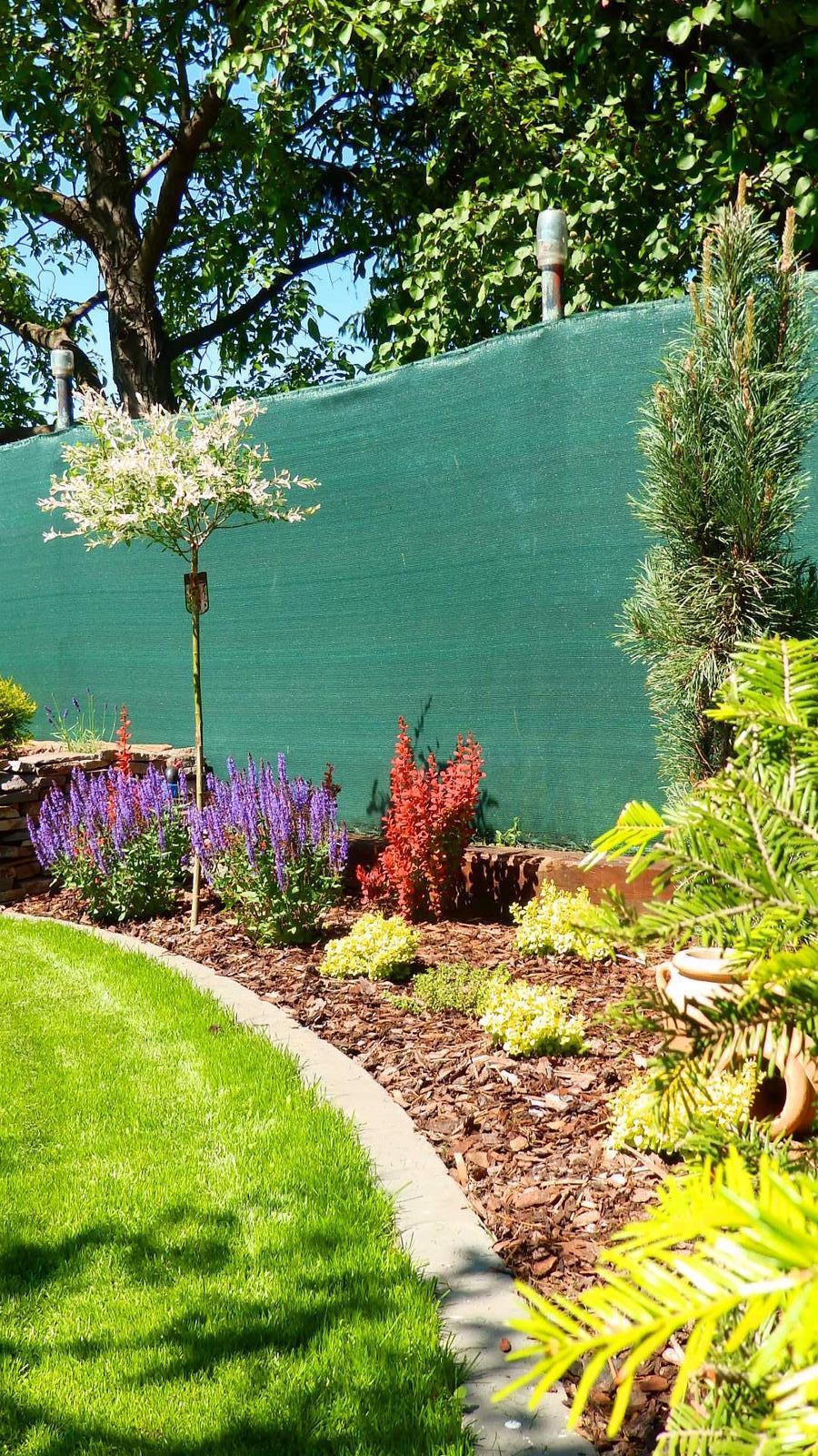 Záhrada pre oddych - Obrázok č. 30
