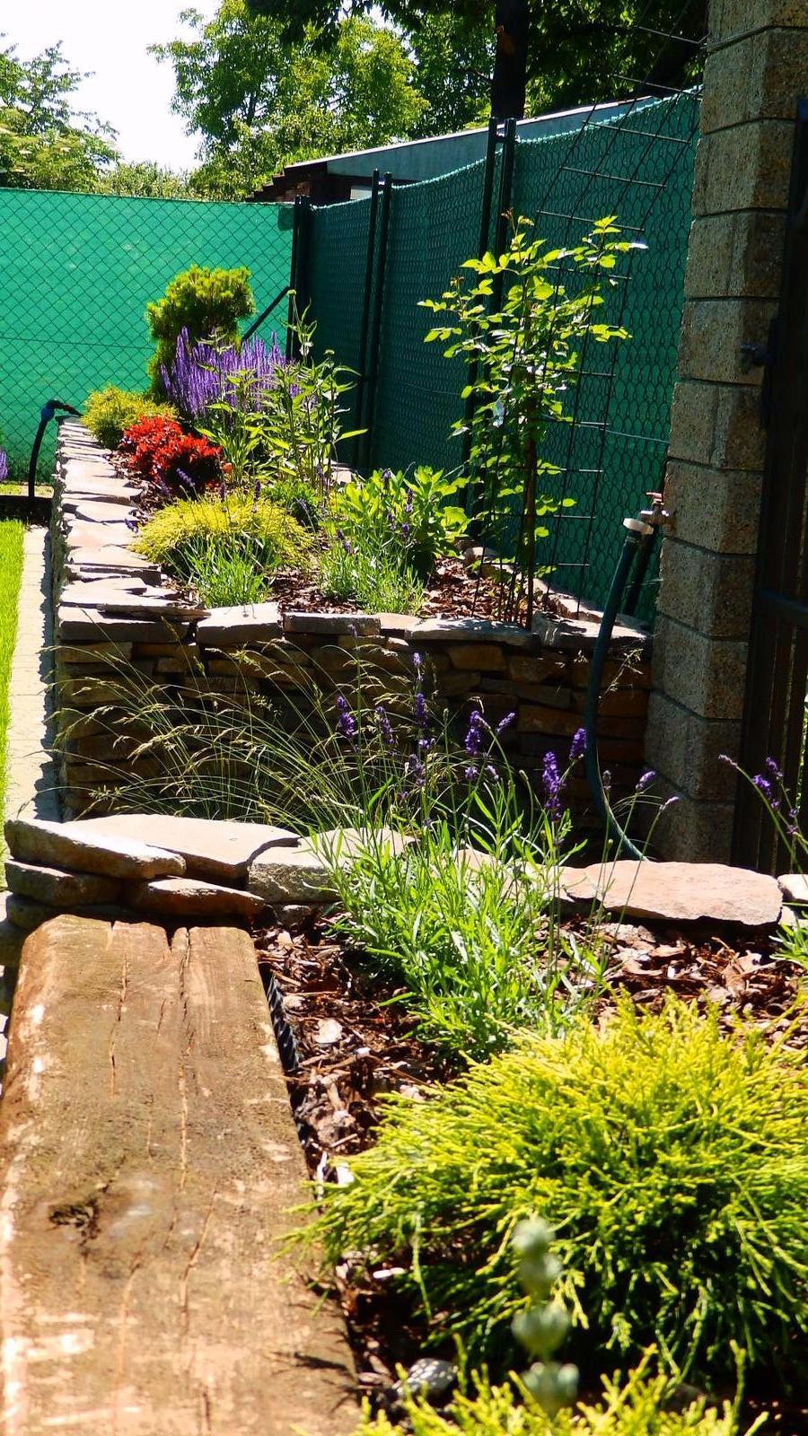 Záhrada pre oddych - Obrázok č. 33