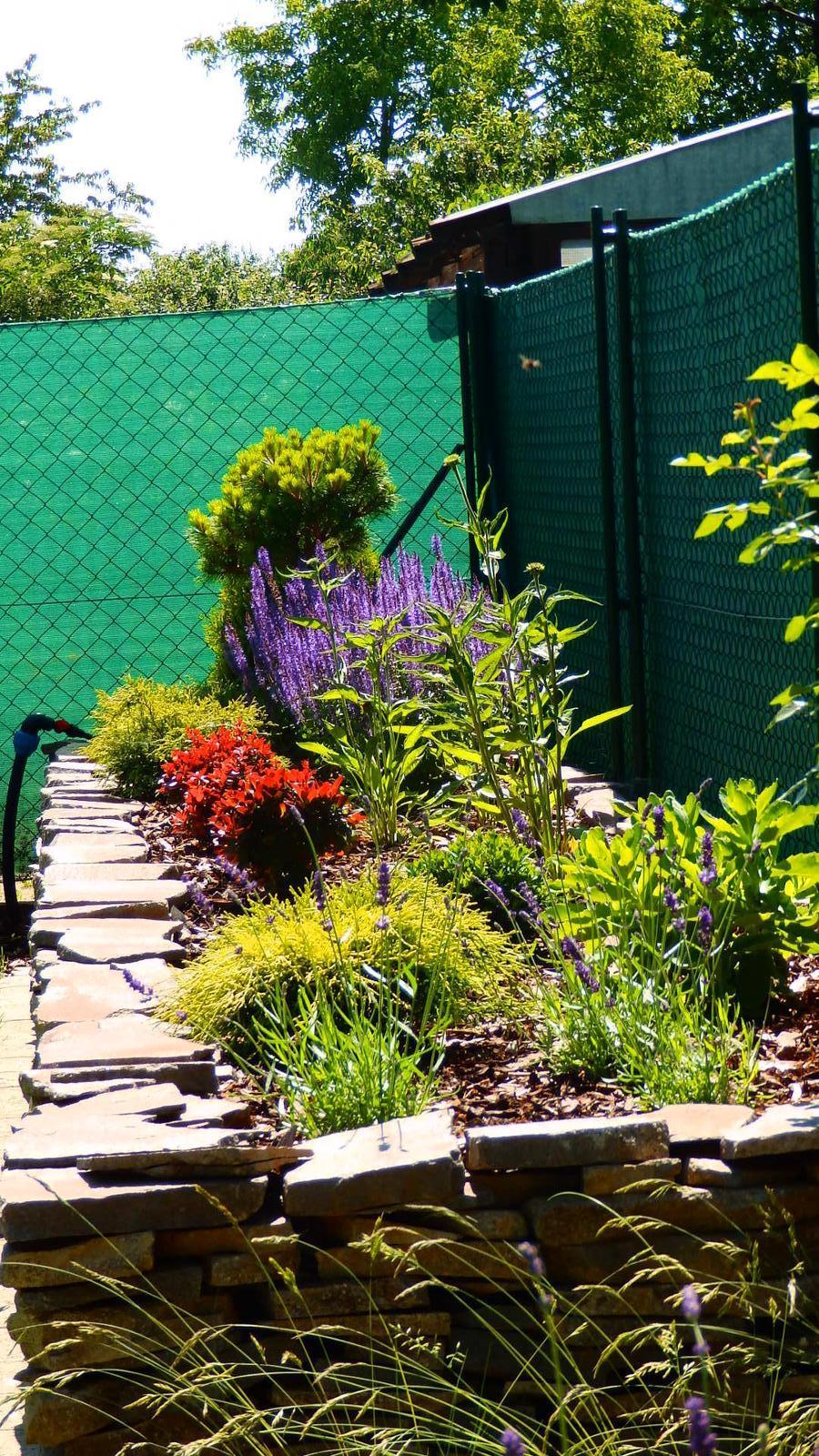 Záhrada pre oddych - Obrázok č. 34