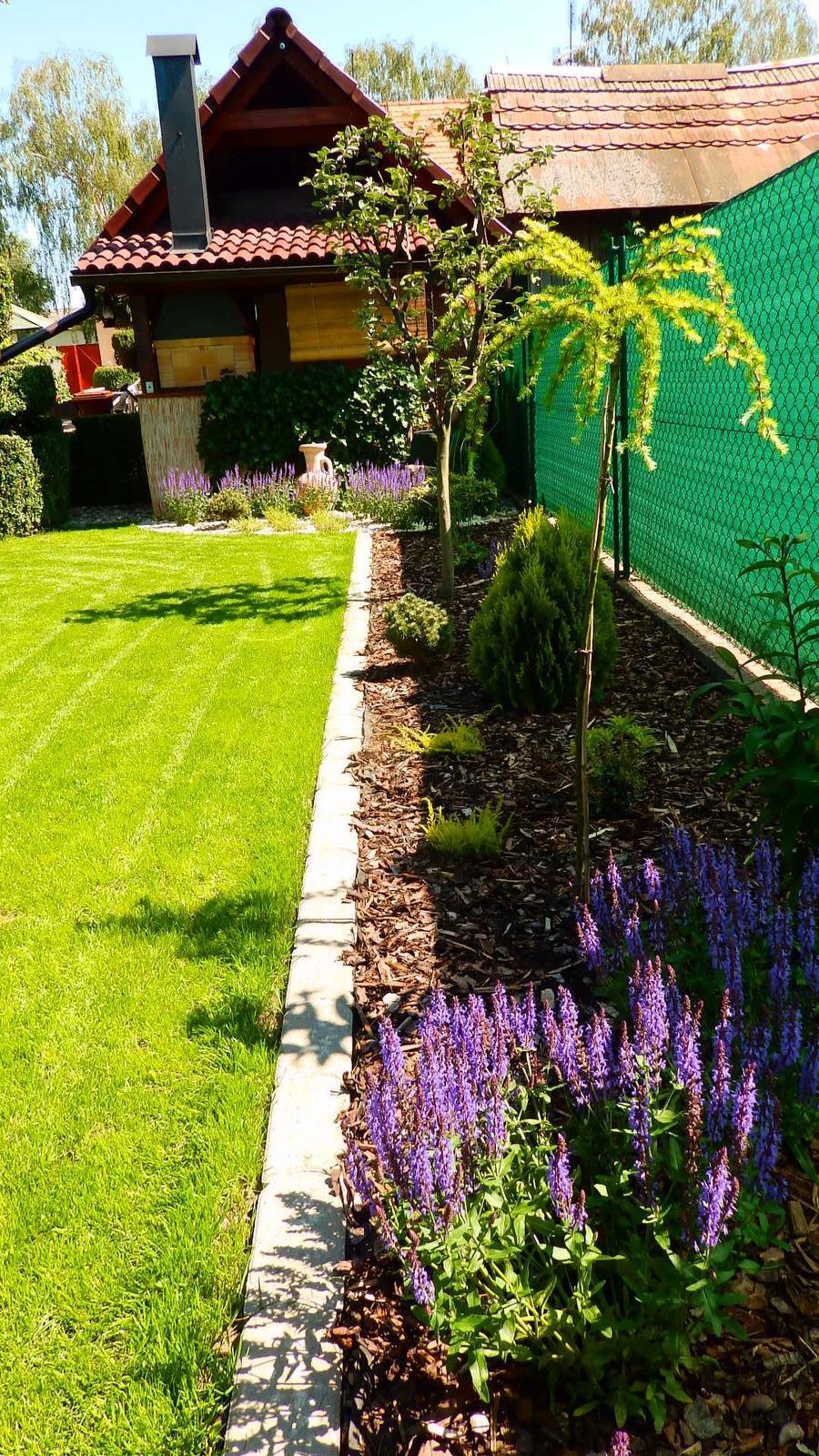 Záhrada pre oddych - Obrázok č. 38