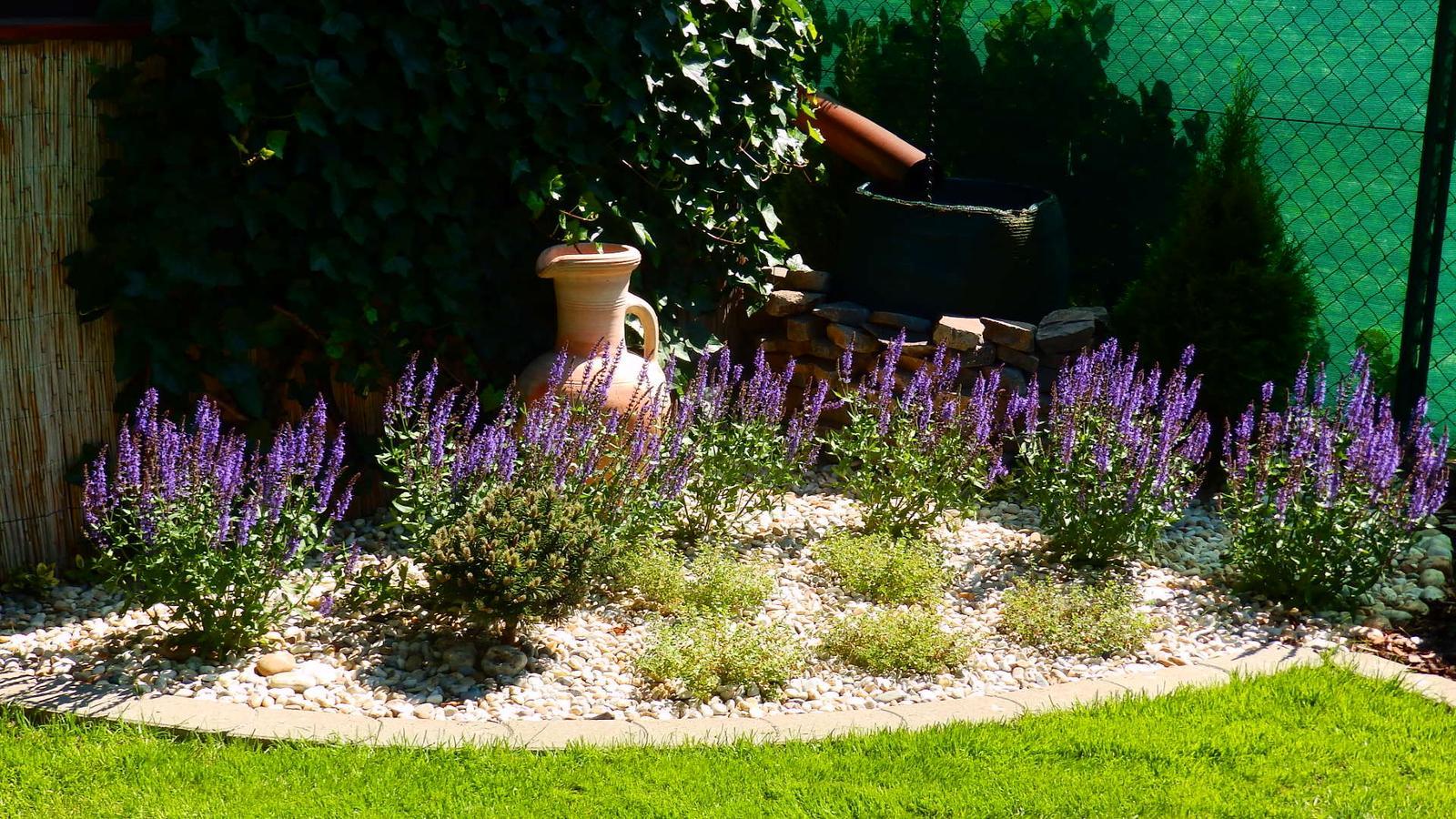 Záhrada pre oddych - Obrázok č. 41