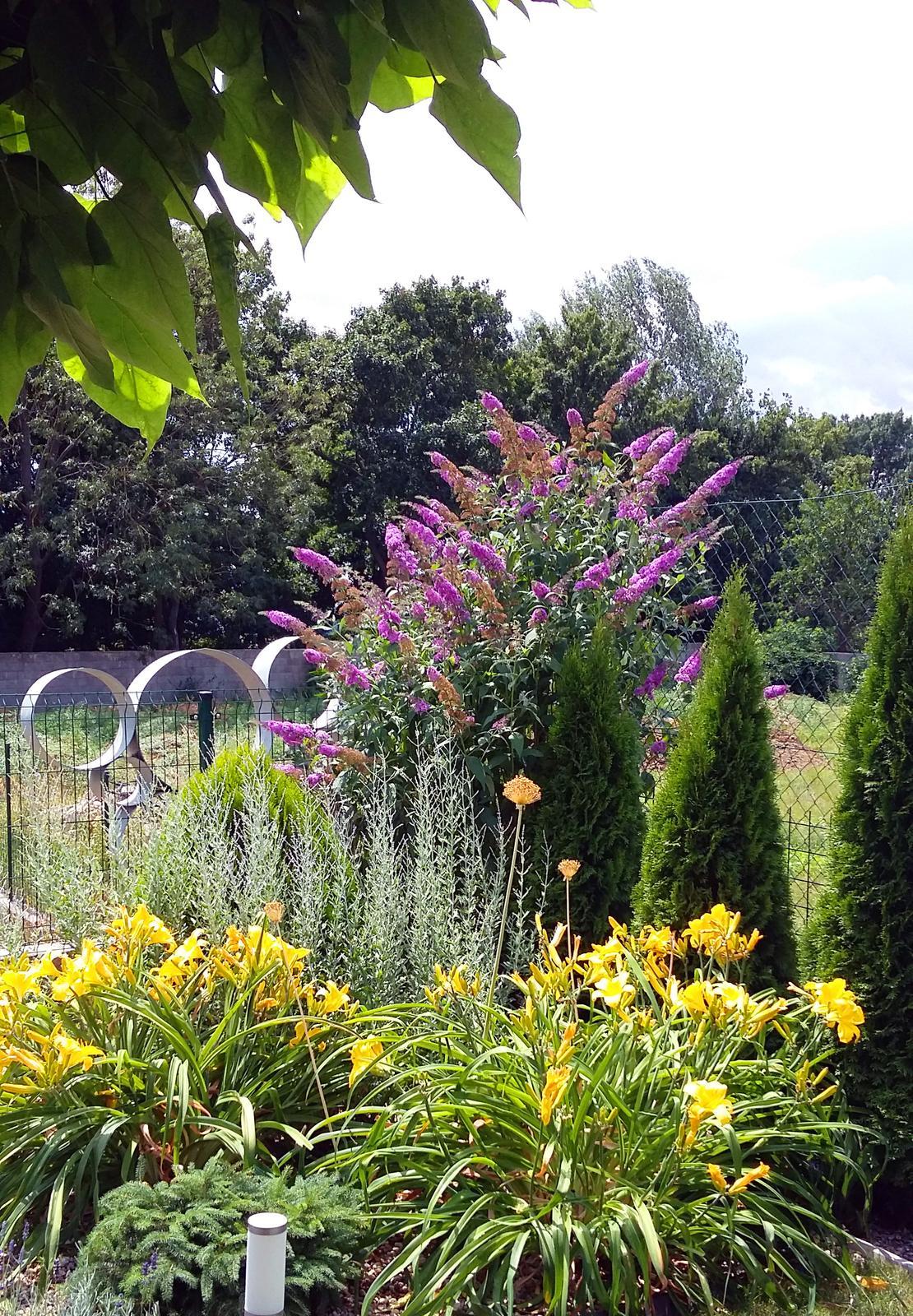 Moderná záhrada - Obrázok č. 26