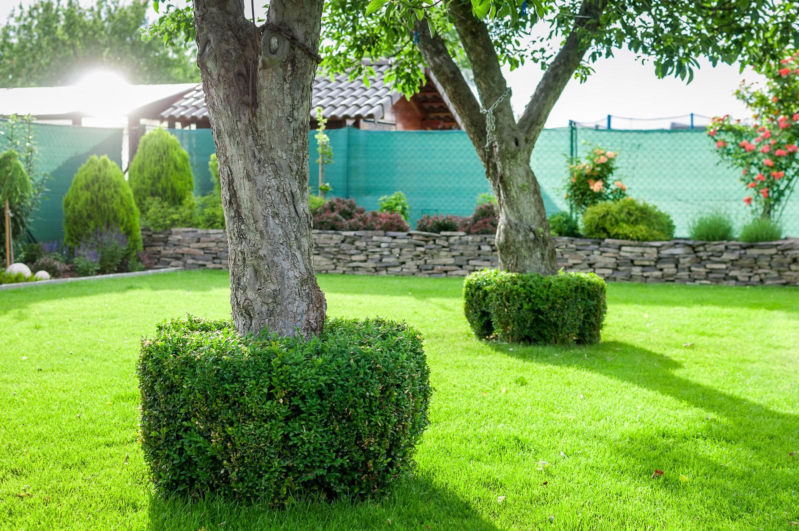 Záhrada pre oddych - Obrázok č. 45