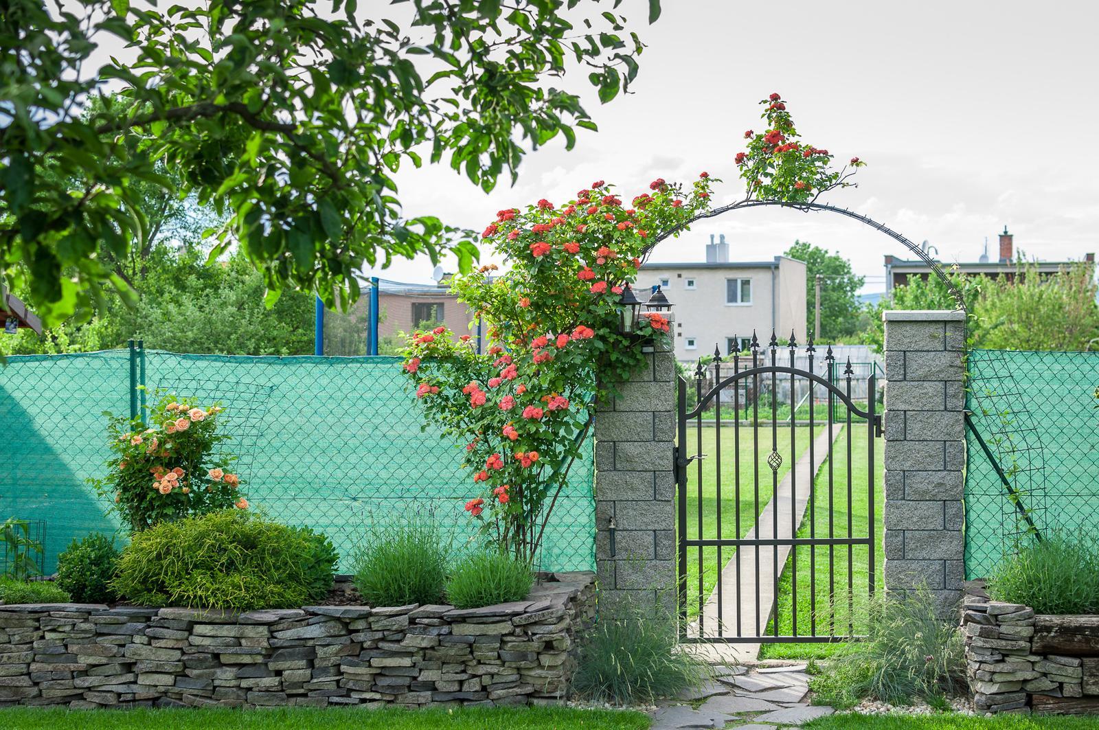 Záhrada pre oddych - Obrázok č. 46