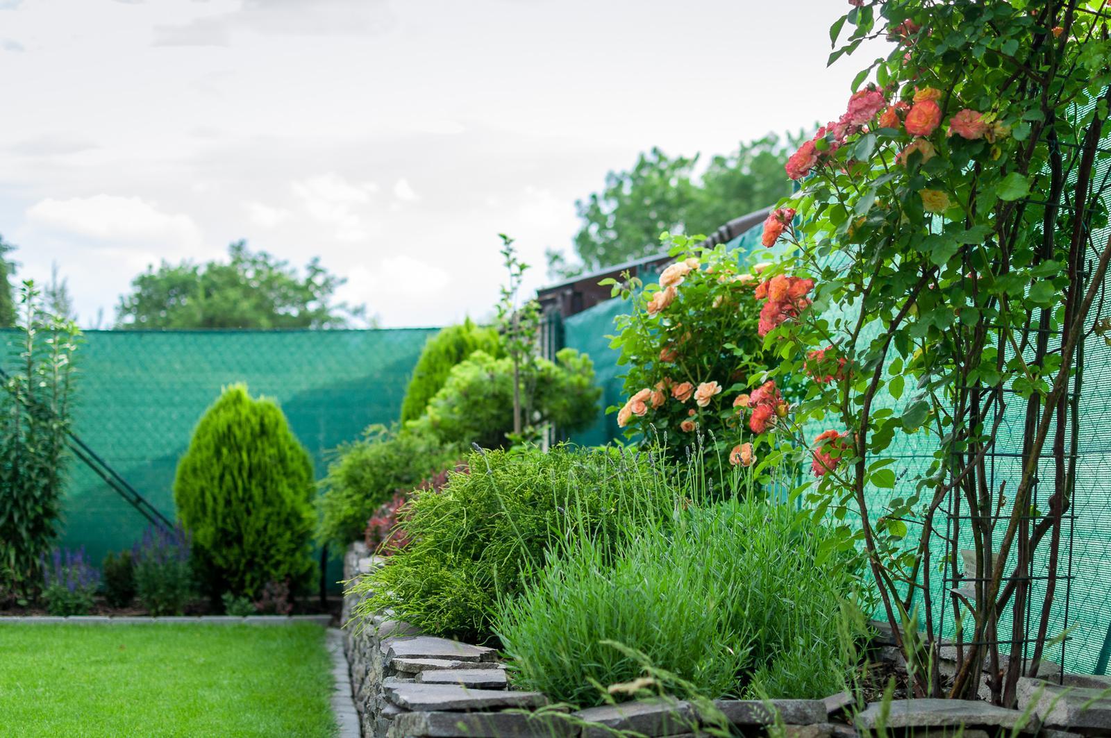 Záhrada pre oddych - Obrázok č. 48