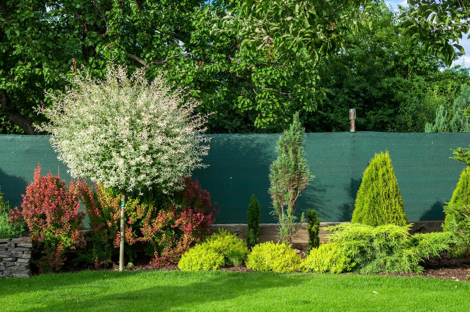 Záhrada pre oddych - Obrázok č. 49