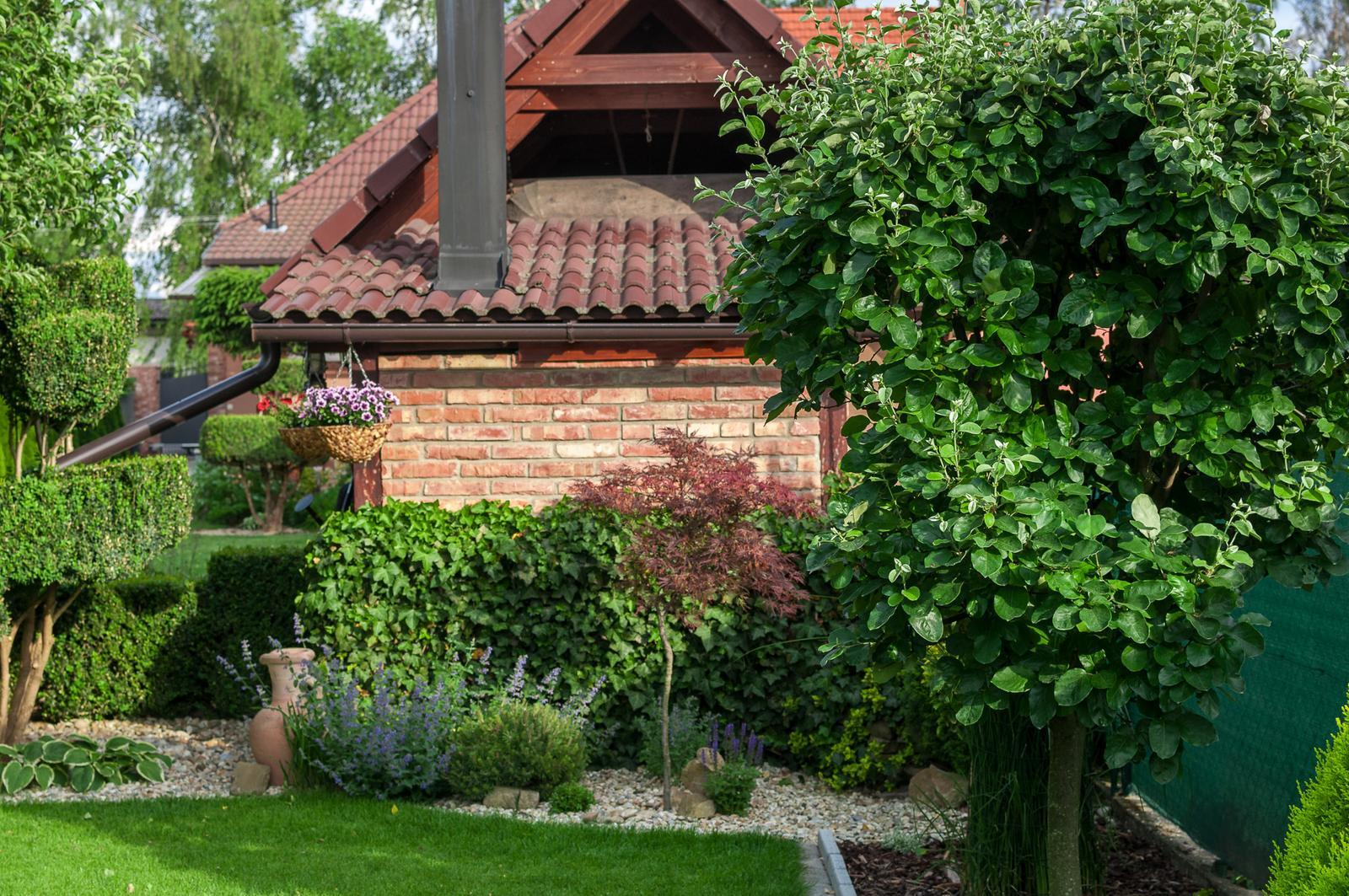 Záhrada pre oddych - Obrázok č. 50