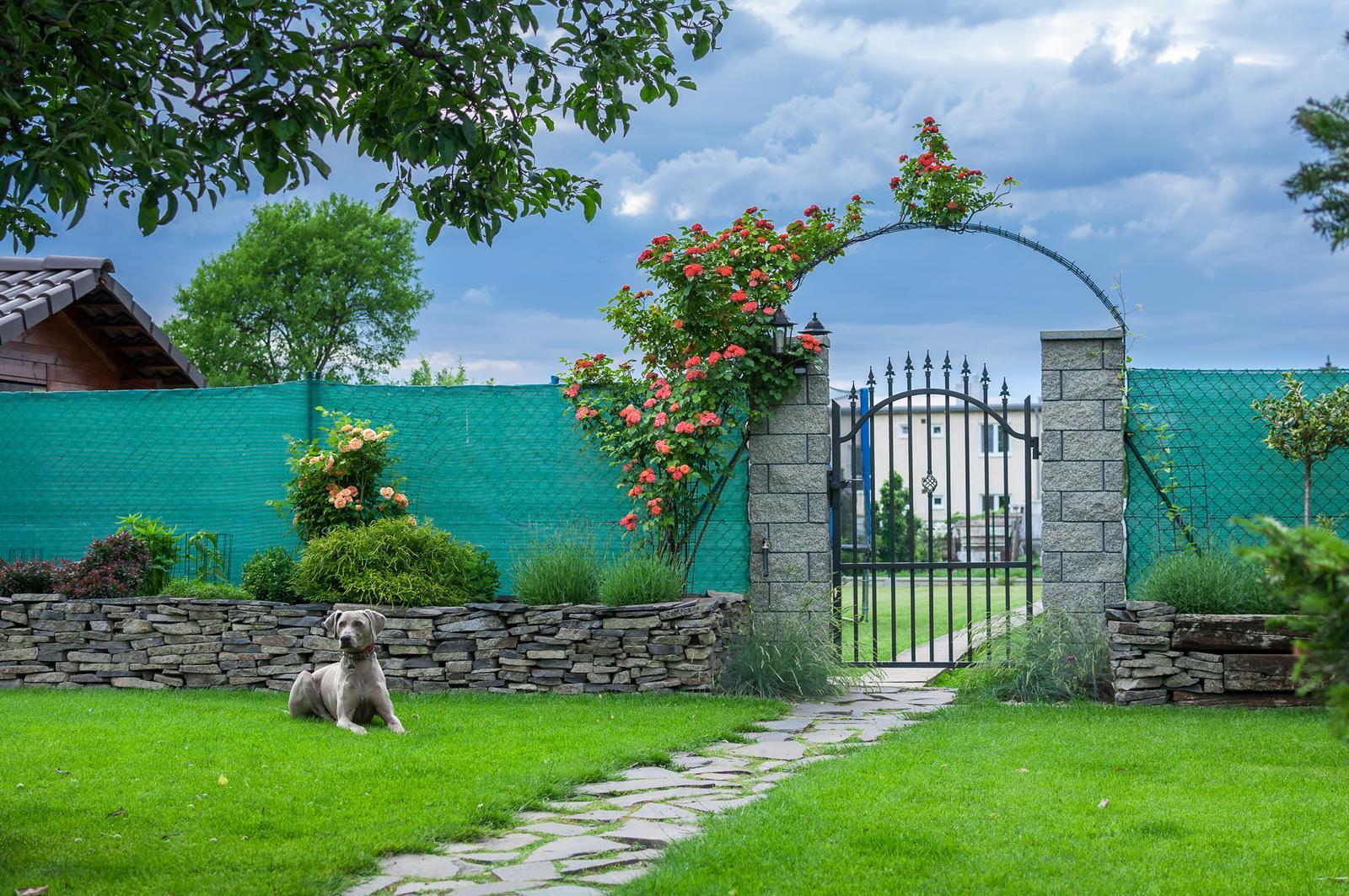 Záhrada pre oddych - Obrázok č. 52