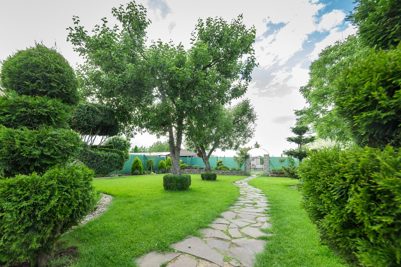 Záhrada pre oddych - Obrázok č. 55