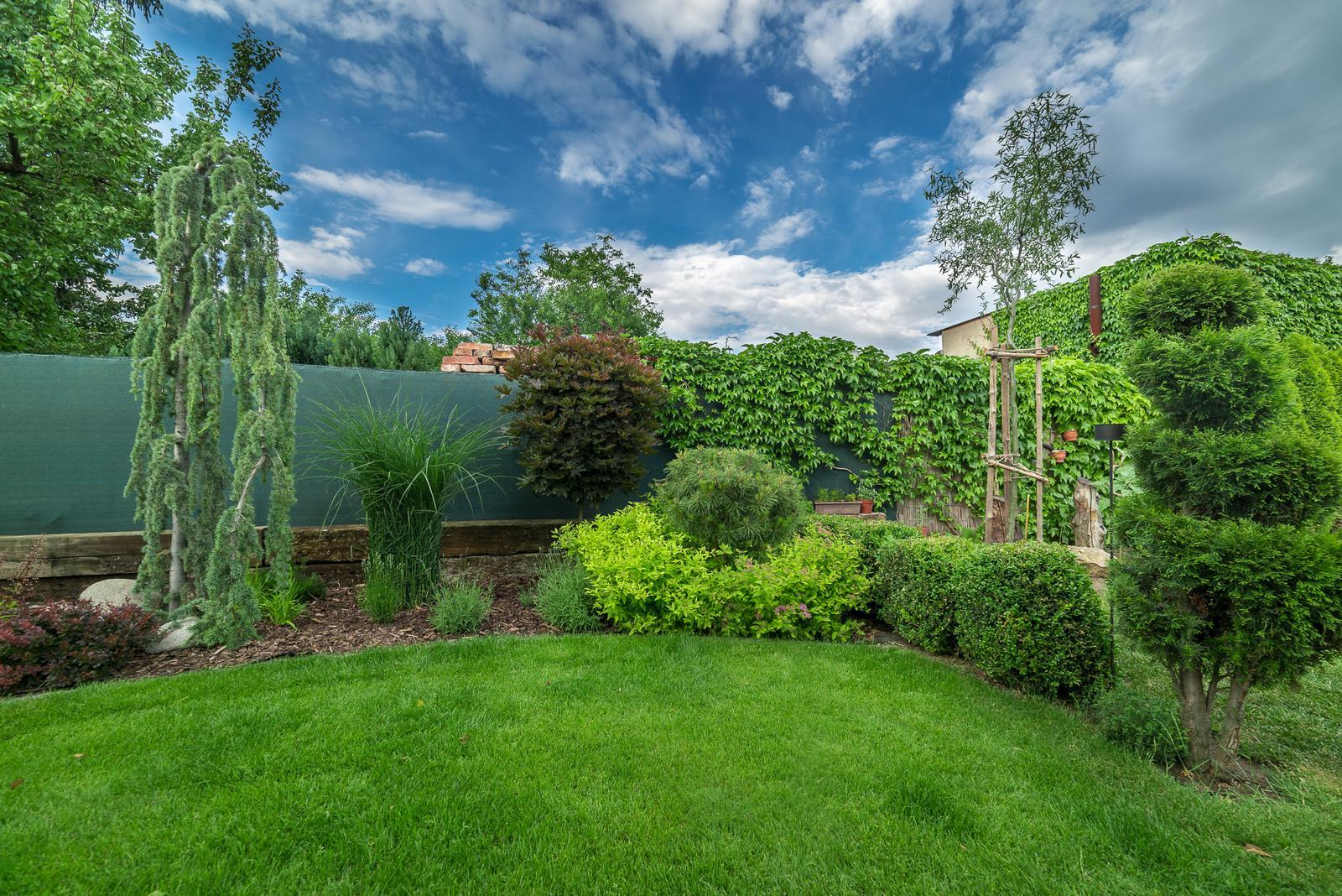 Záhrada pre oddych - Obrázok č. 59