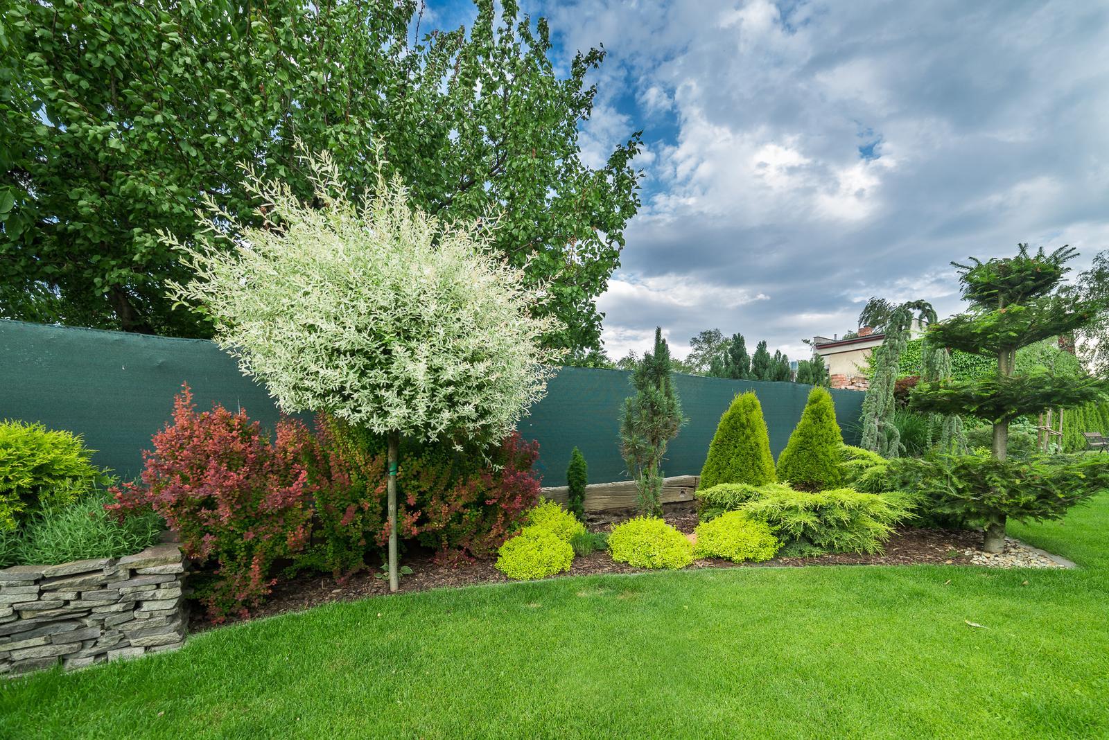 Záhrada pre oddych - Obrázok č. 62