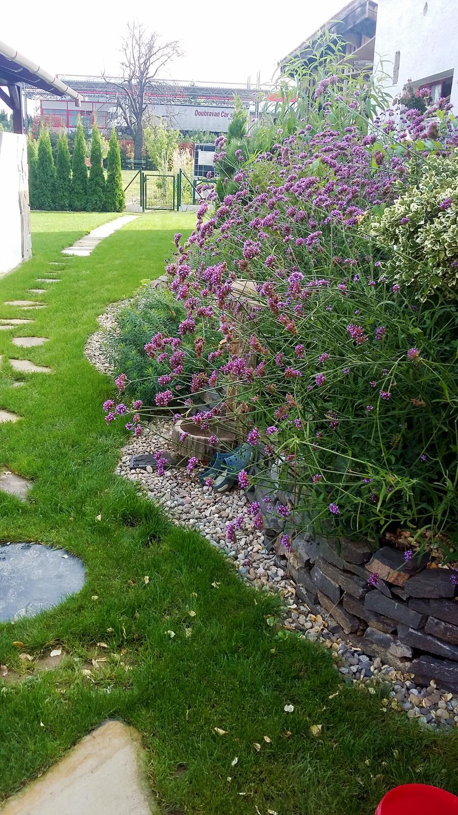 Záhrada s láskou robená - Obrázok č. 14