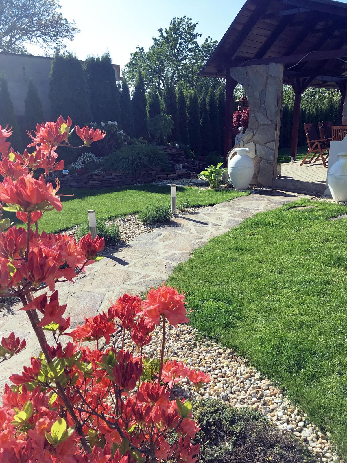 Záhrada s láskou robená - Obrázok č. 17