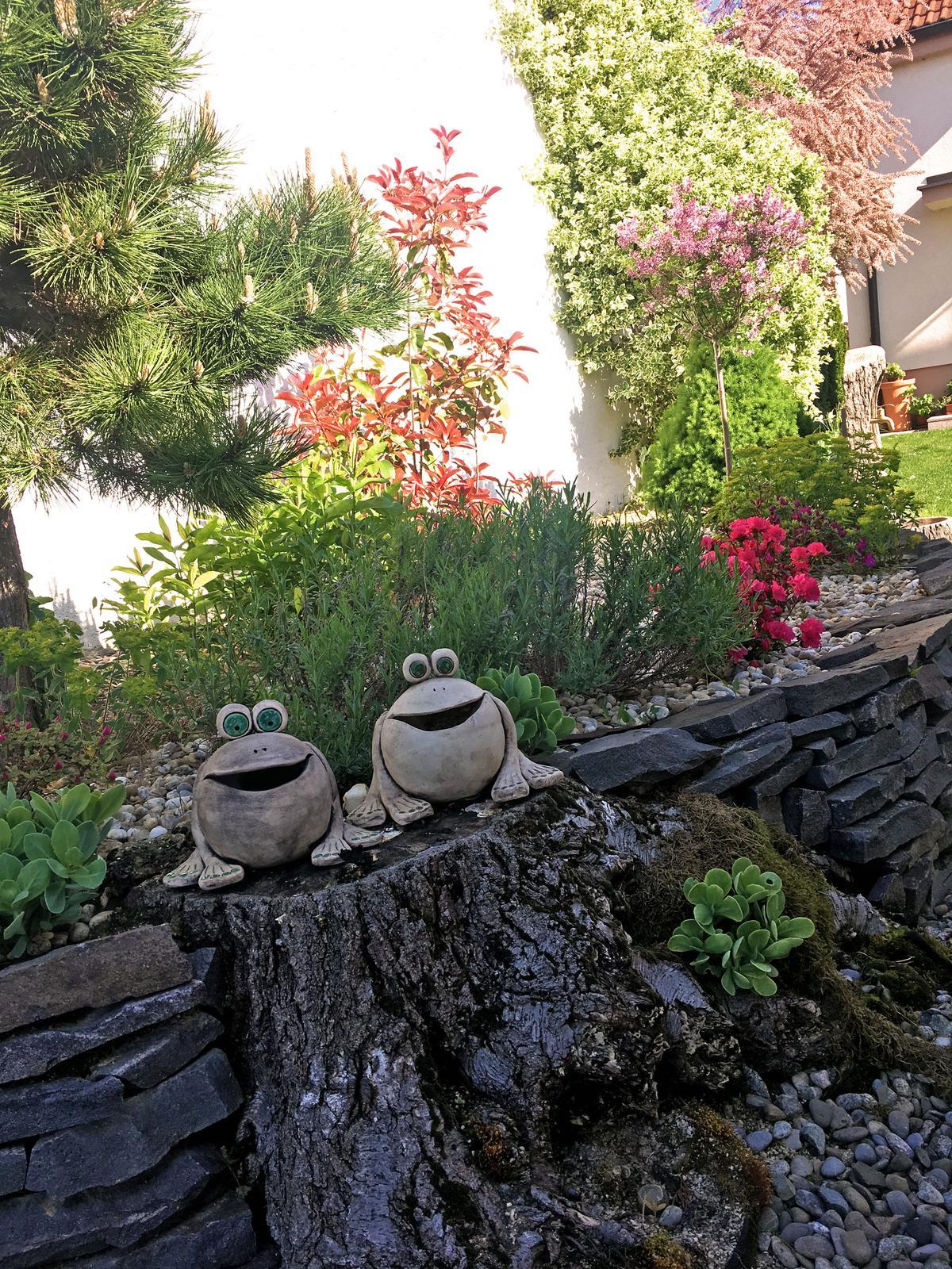 Záhrada s láskou robená - Obrázok č. 21