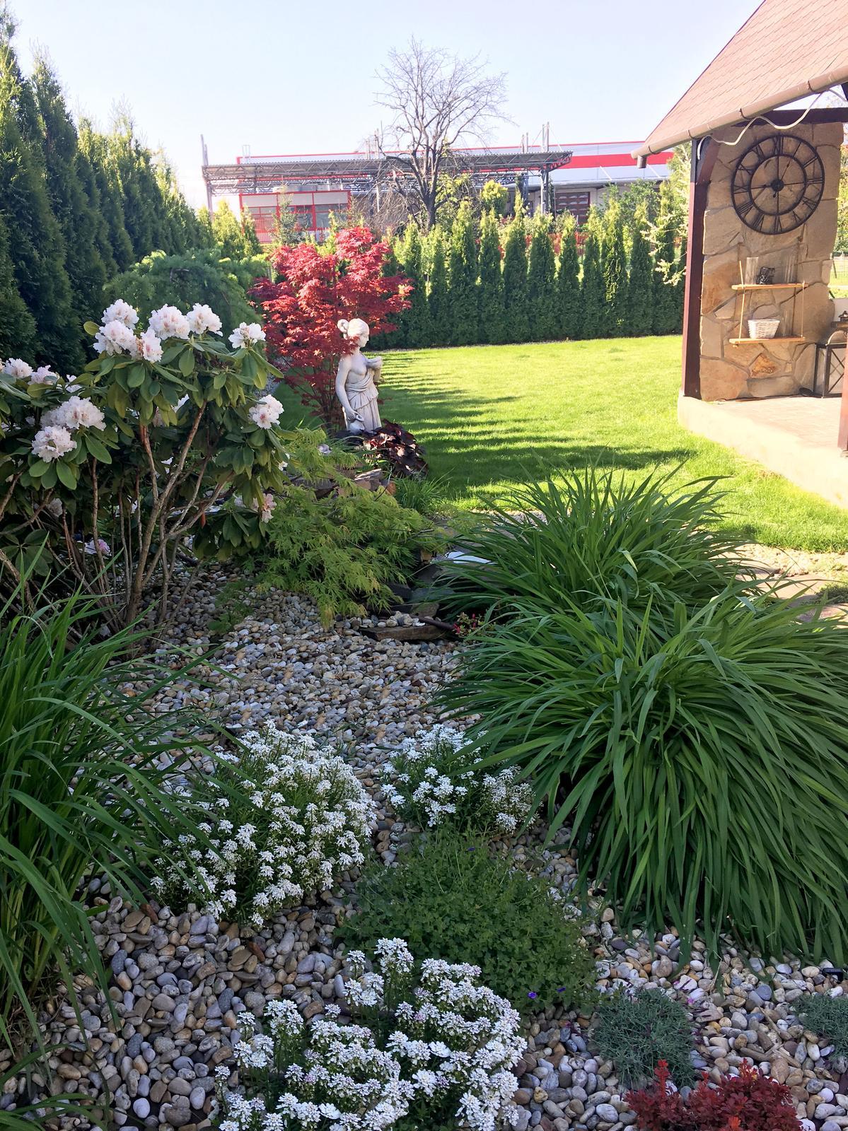 Záhrada s láskou robená - Obrázok č. 25