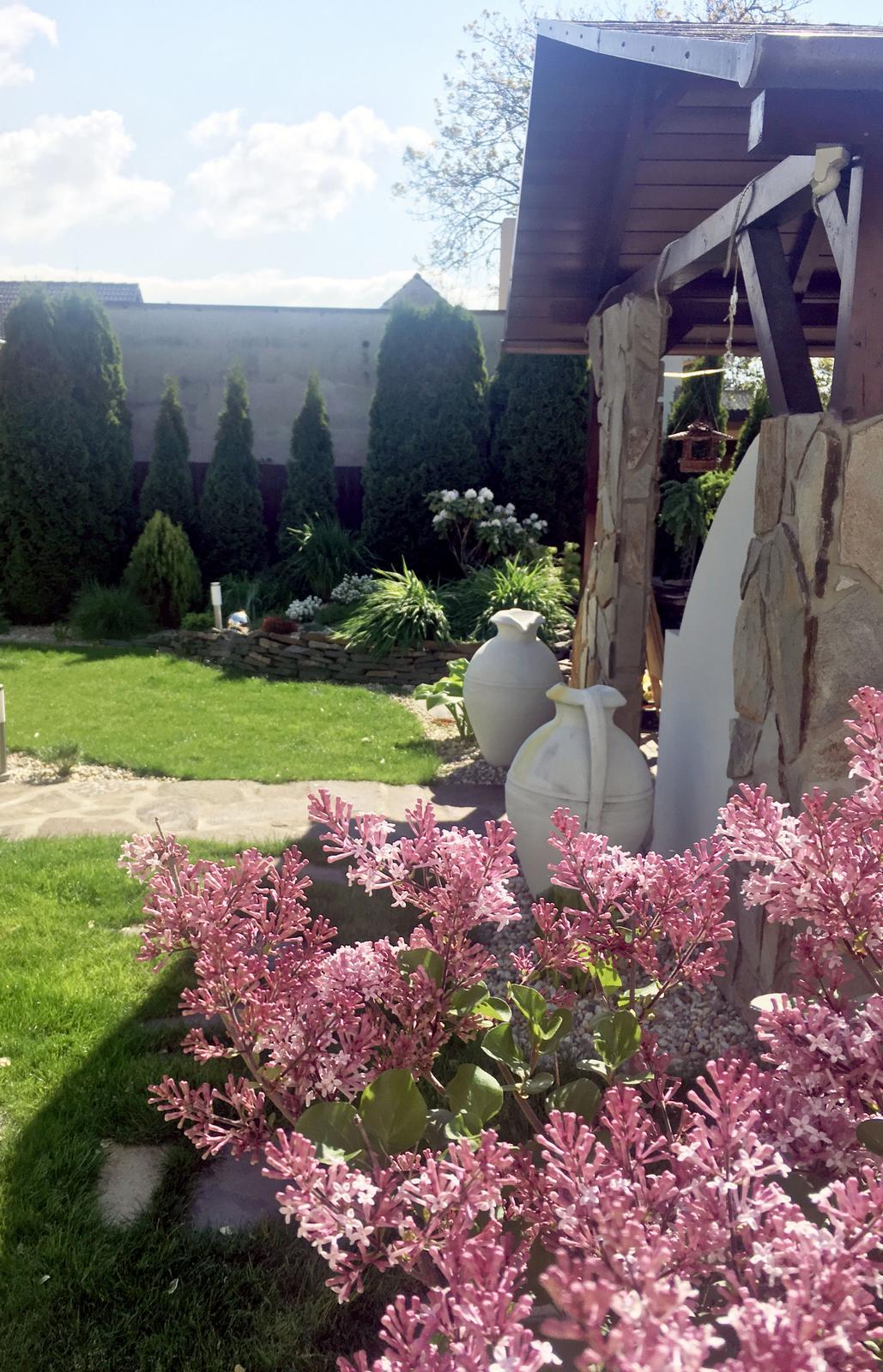 Záhrada s láskou robená - Obrázok č. 28