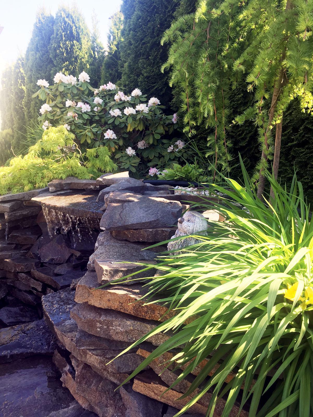 Záhrada s láskou robená - Obrázok č. 29