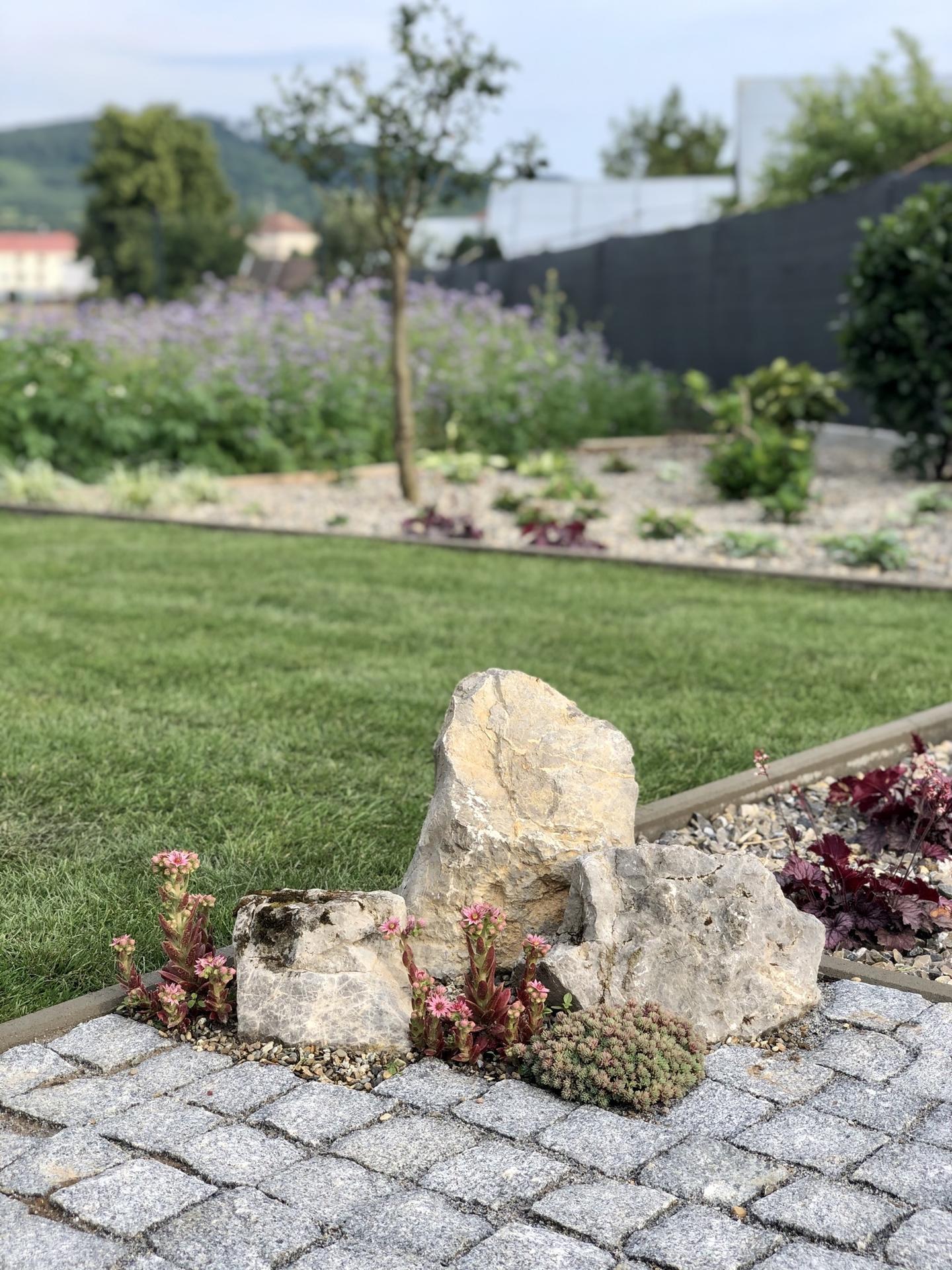 ...záhrada na Slnečnej... - Obrázok č. 37