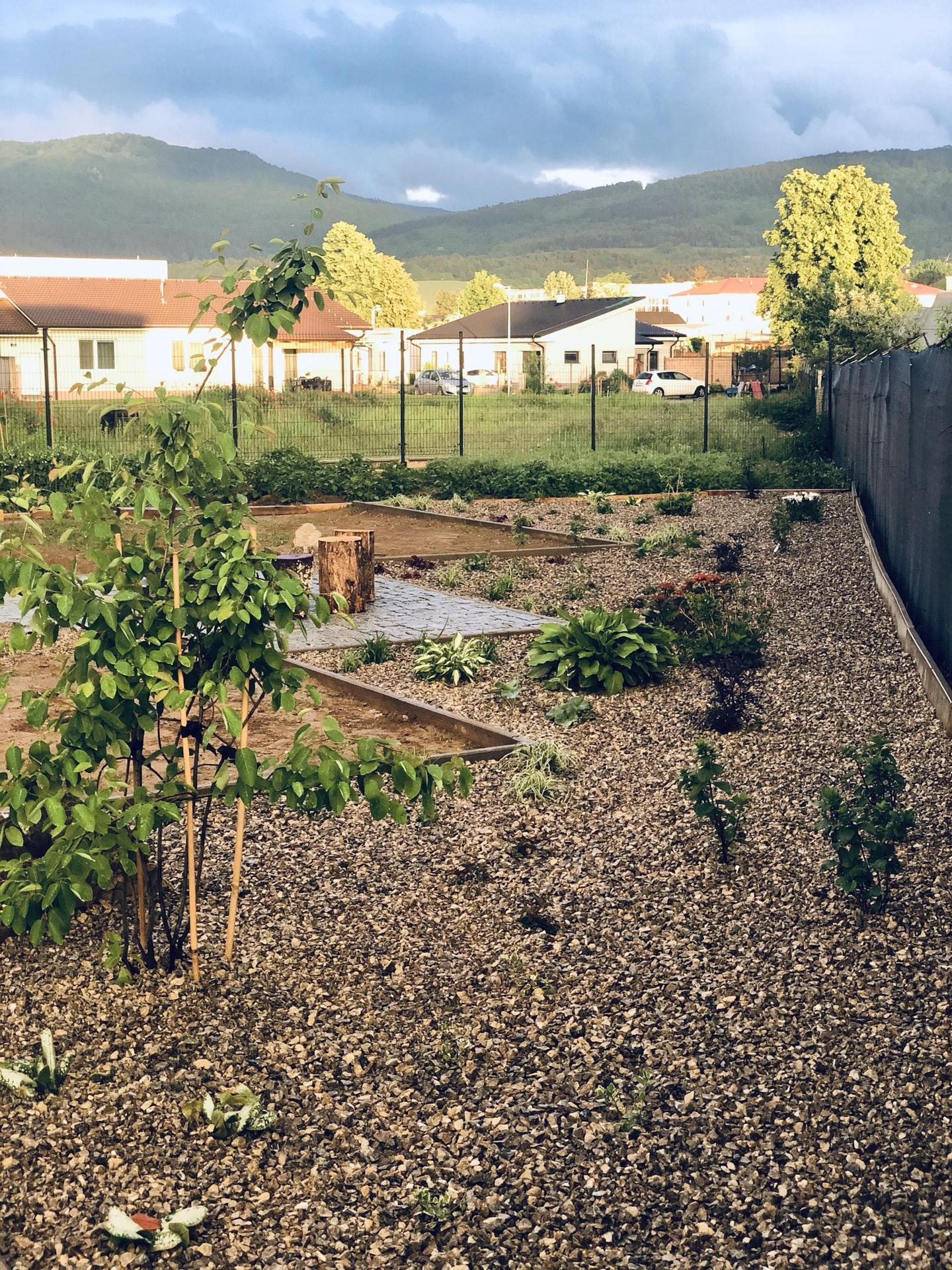 ...záhrada na Slnečnej... - Obrázok č. 24