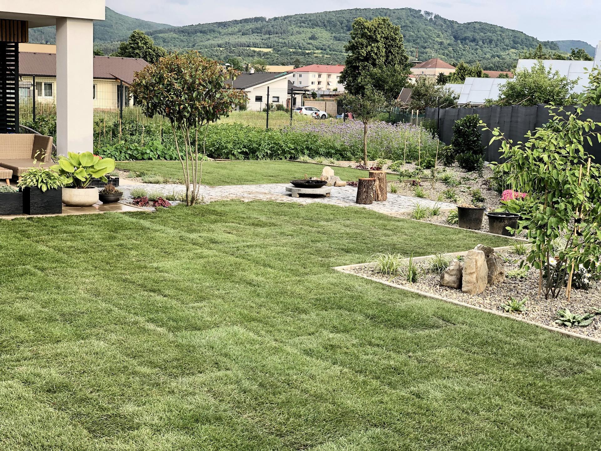 ...záhrada na Slnečnej... - Obrázok č. 35