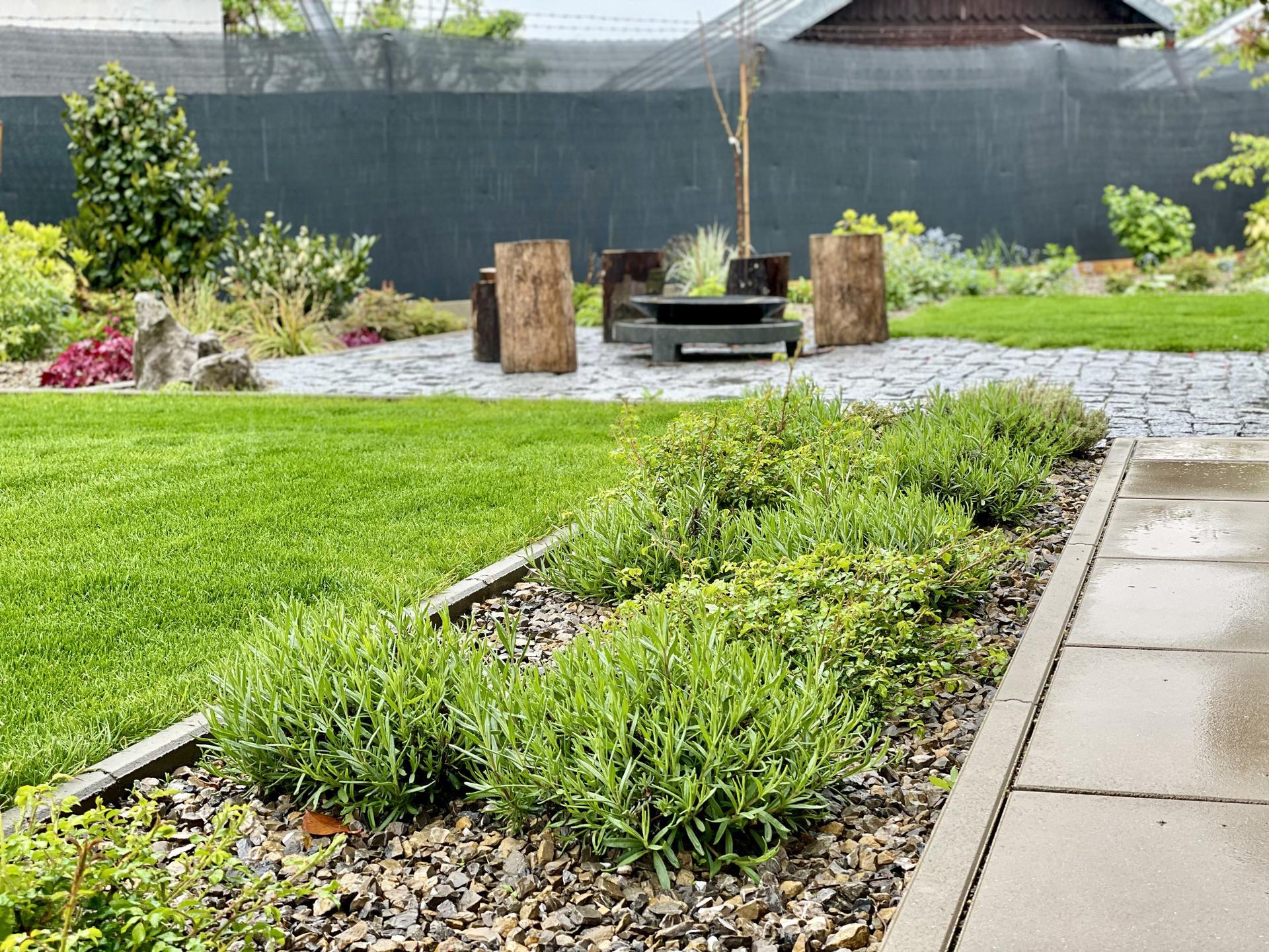 ...záhrada na Slnečnej... - Obrázok č. 100
