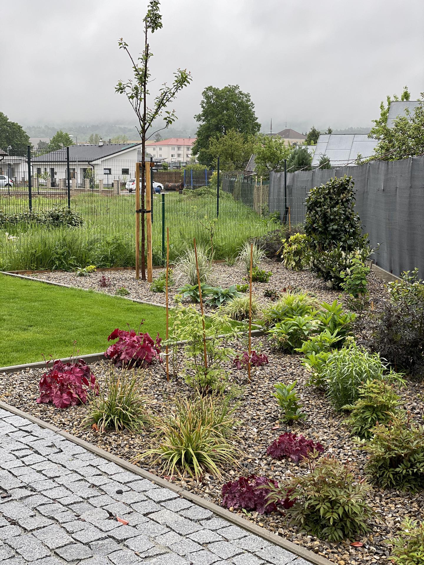...záhrada na Slnečnej... - Obrázok č. 99