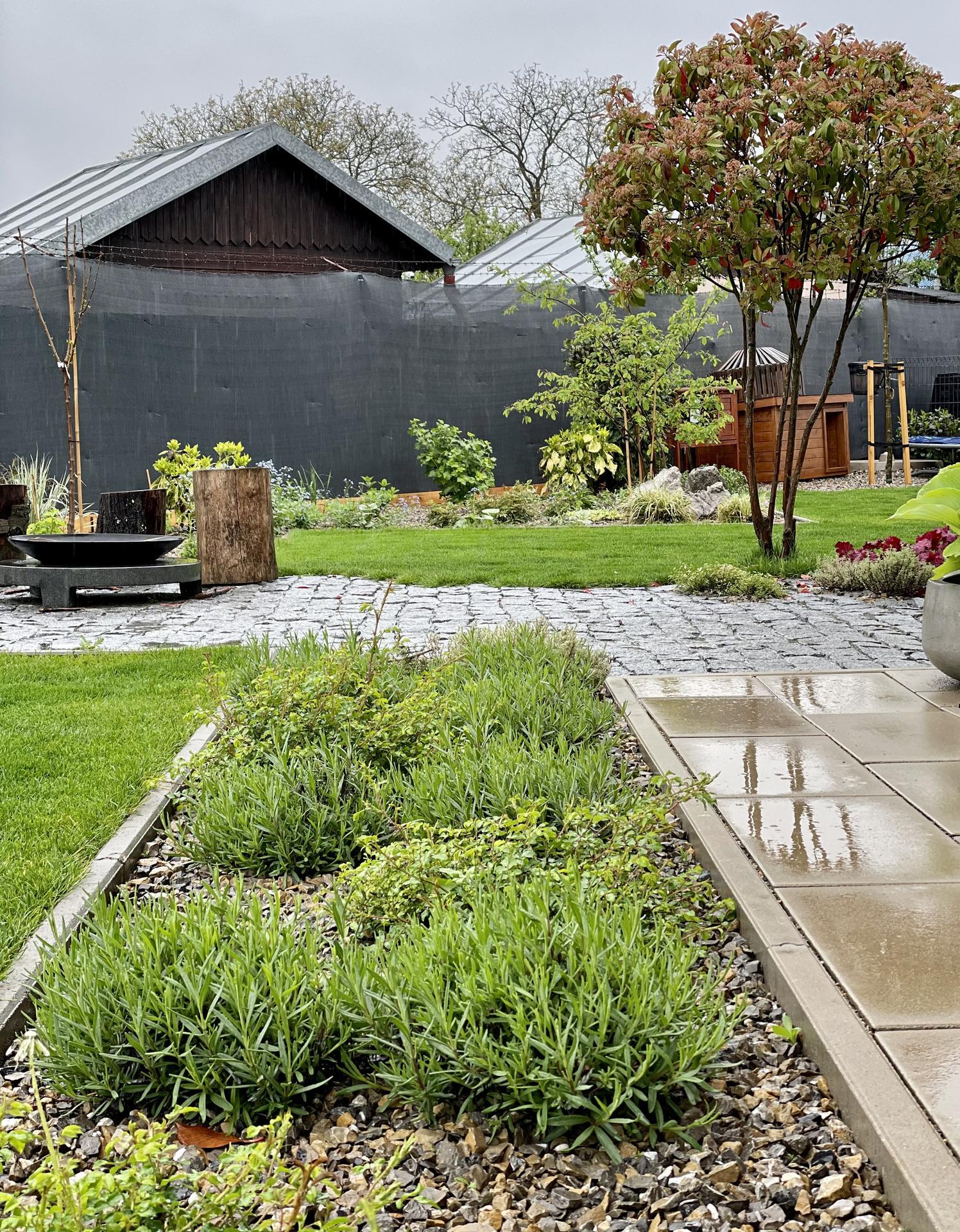 ...záhrada na Slnečnej... - Obrázok č. 101