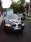 Svatební výzdoba na auto.,