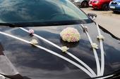 Puget květin na auto s přísavkami + mašle ,
