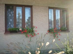 pôvodné okná