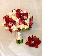 orchidea - viazanie