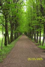 Zámecký park v Holešově