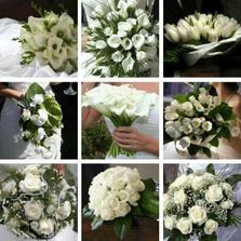 Miluji kvetiny..