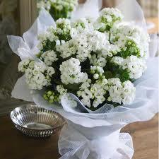 Moje retro svatba v krátkých šatech:-) - na stoly...