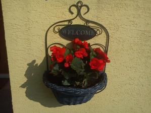 kvetinka pri vstupe do domu :)